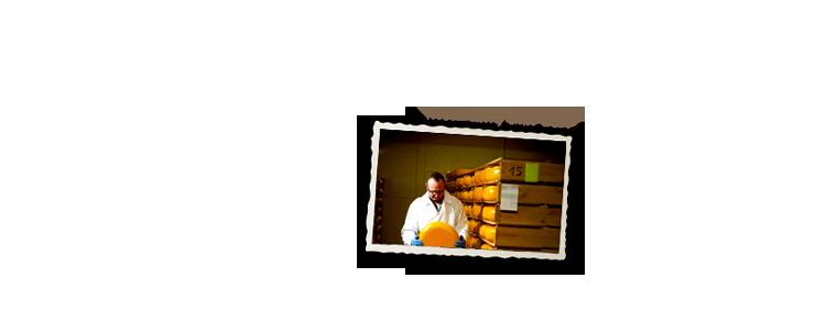 Oude kaasmakerij wvnh